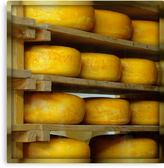 Got Cheese? by Susan Bergstrom