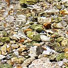 Pebbles II by KUJO-Photo