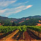 California Vineyard by Jerry L. Barrett