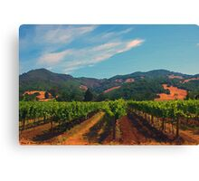 California Vineyard Canvas Print