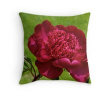 Red Peony - NYBG Spanish Paradise Show Throw Pillow