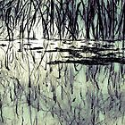 Reflections by Su Walker