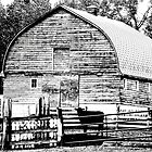 Barn - Black and White by Laurast