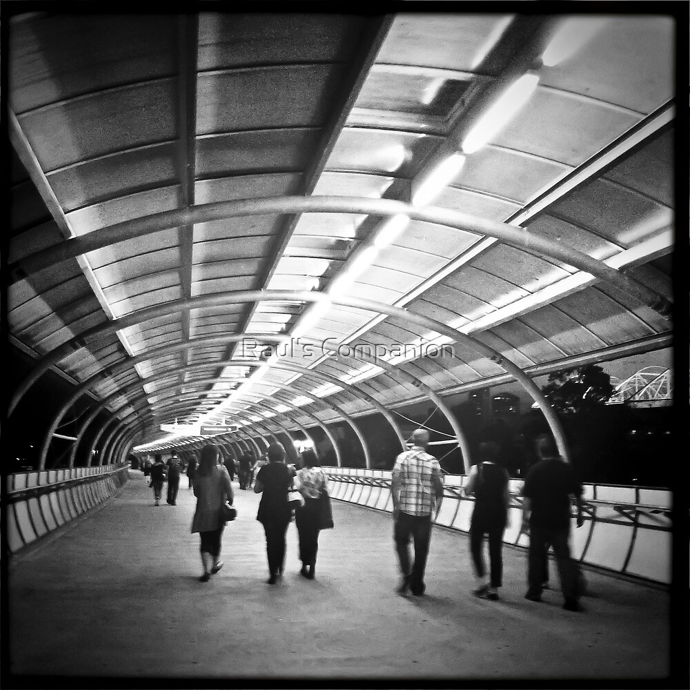 61 of 365 Hipstamatic Project by Raul's Companion
