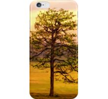Towards Summer's End iPhone Case/Skin