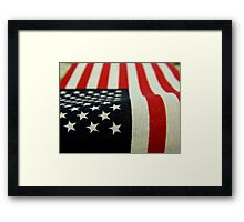 I Pledge Allegiance..........   ^ Framed Print