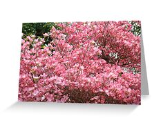 Trees Pink Dogwood Flowers art prints Baslee Troutman Greeting Card
