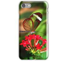 On Red Flower Glasswing - Greta Oto iPhone Case/Skin