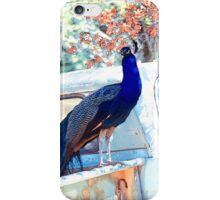 The Peacock and the Pickup iPhone Case/Skin