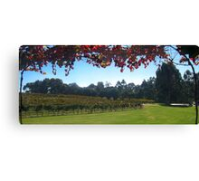 Margaret River Winery views Canvas Print