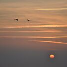 Sunset Contrails - Granville, France 2012 by muz2142