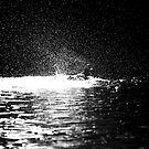 Splashing Duck by Sheaney