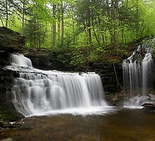 R. B. Ricketts Falls by Tim Devine