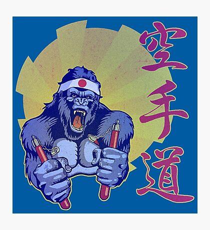 Kung Fu Kong Photographic Print