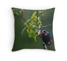 Preparing to Launch Throw Pillow