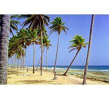 Pinones to Loiza Beach, Puerto Rico  Photographic Print