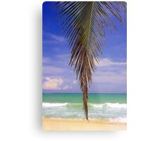 Shady Palm, Puerto Rico  Metal Print