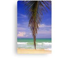 Shady Palm, Puerto Rico  Canvas Print