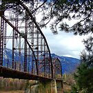 The Old Steel Bridge by rocamiadesign