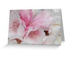 Rhododendrun Greeting Card