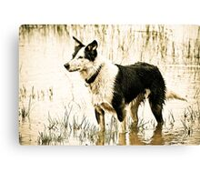 Awaiting Command Canvas Print