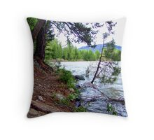 High Water 4 Throw Pillow