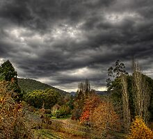 Storm Valley by Heather Prince
