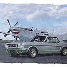 Vintage Mustangs by Steven  Agius