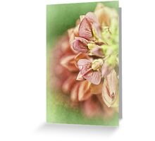 The Gifts Of Nature.... Greeting Card