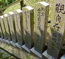 Japanese Pillars by Lucas Modrich