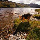Alfie Loch by Nik Watt