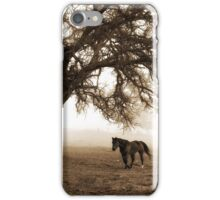 The Old Oak and The Steed  iPhone Case/Skin