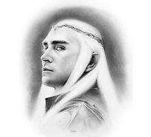 Thranduil: King of the Woodland Realm Photographic Print