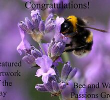 Bee and Wasp Banner Challenge Entry by Mark Hughes