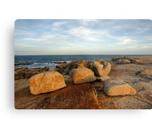Coastal Sculptures Metal Print