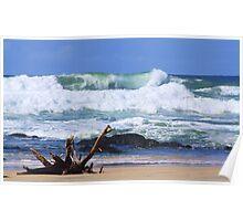 wild surf ... Poster