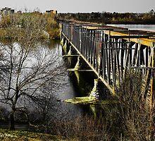Forgotten Bridge by Heather King