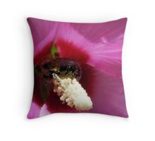 Rose Of Sharon And Bumble Bee Throw Pillow