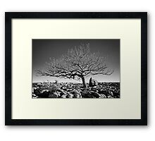 Newbiggin Crags 10 - Lone Tree & Limestone Pavement, Cumbria Framed Print