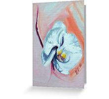 Orchid on peach  Greeting Card