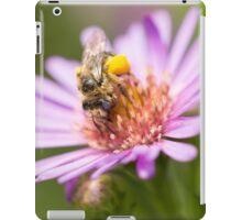 Cute bee on an Aster iPad Case/Skin