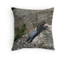Damsel Fly Throw Pillow
