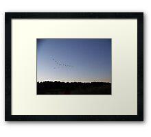 Flying V formation Framed Print