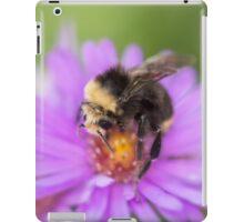 Bumblebee iPad Case/Skin