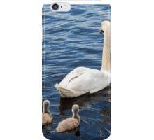 Swan Family iPhone Case/Skin