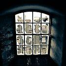 Broken Windows by Richard Pitman
