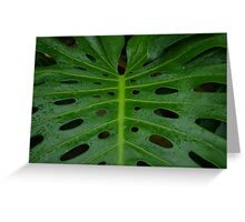 Grean leaf with holes for its design Greeting Card