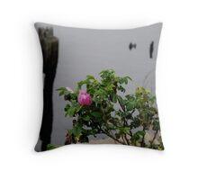 Beach Rose Throw Pillow