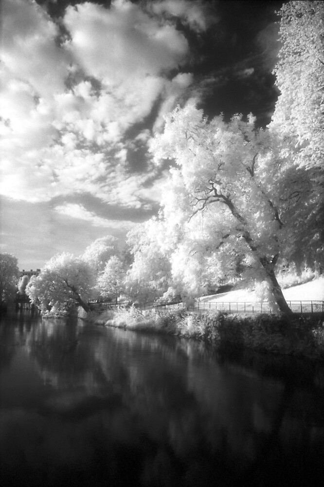 Infrared 4 by BKSPicture