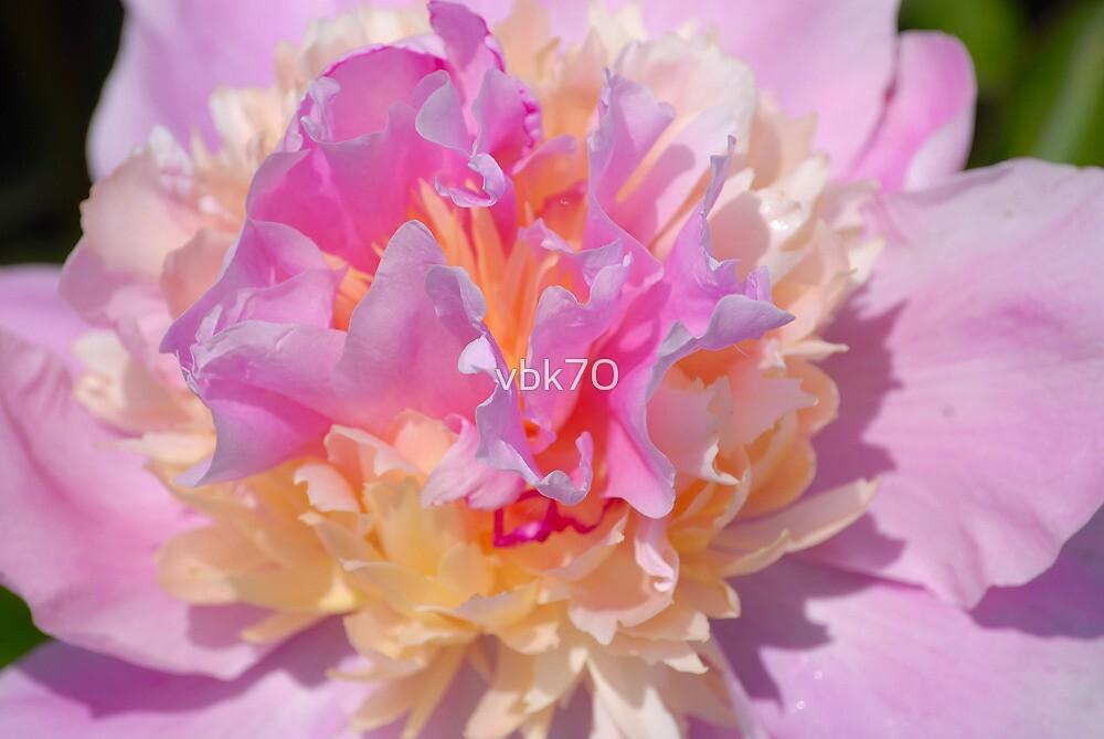 Magic Colours by vbk70